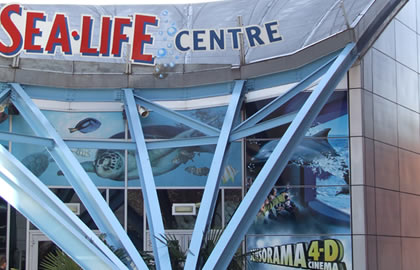 Birmingham-and-Drayton-manor-Theme-park-and-Snowdome-and-Sea-Life-Centre-and-Star-City